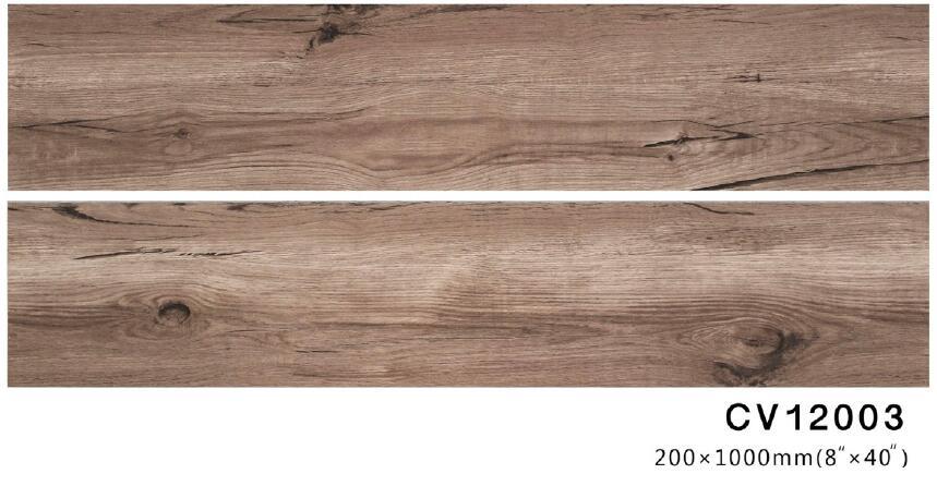 12003-1.jpg